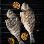 Sea bream on the grill
