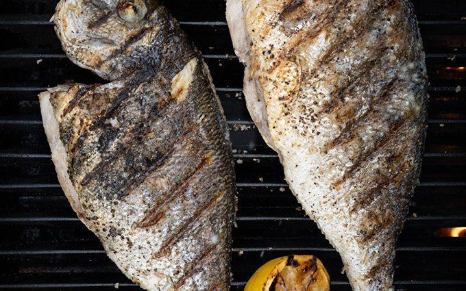Easy Sea Bream on the Grill (sargo)